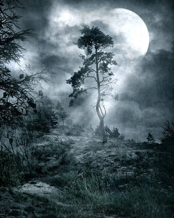 gotiskt landskap 10