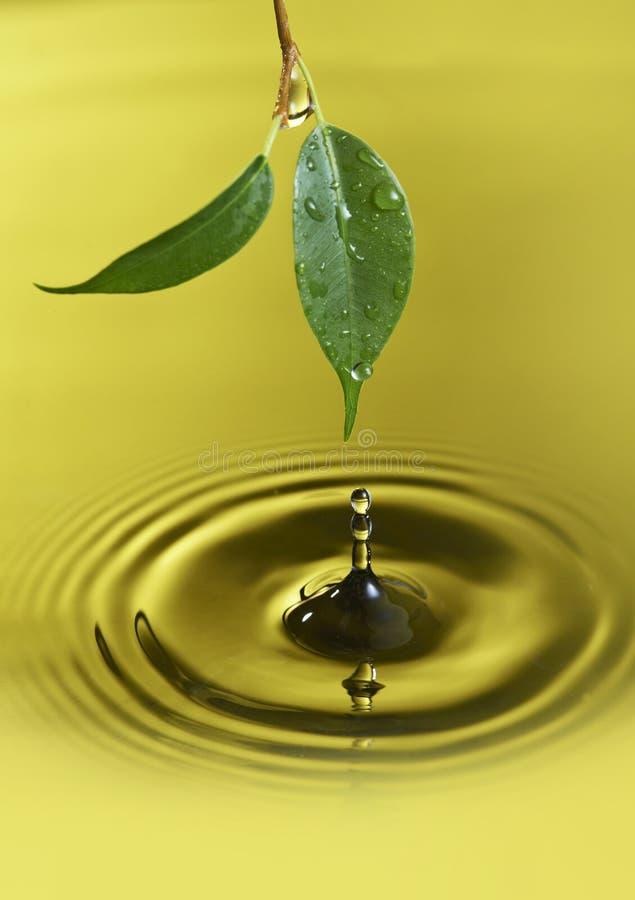 Gotita de agua fotografía de archivo libre de regalías