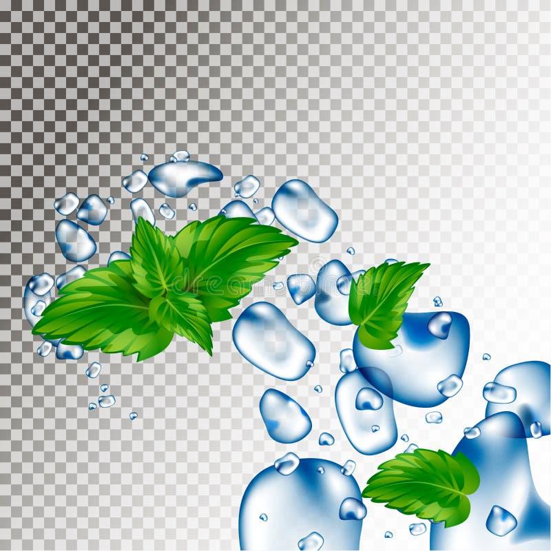 Gotitas de agua y hojas de menta Soplos y descensos Frescura del agua ilustración del vector