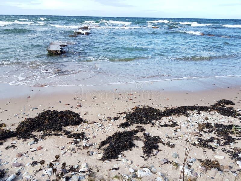 Gotland& x27; isola del Nord della costa tempestosa di s immagine stock