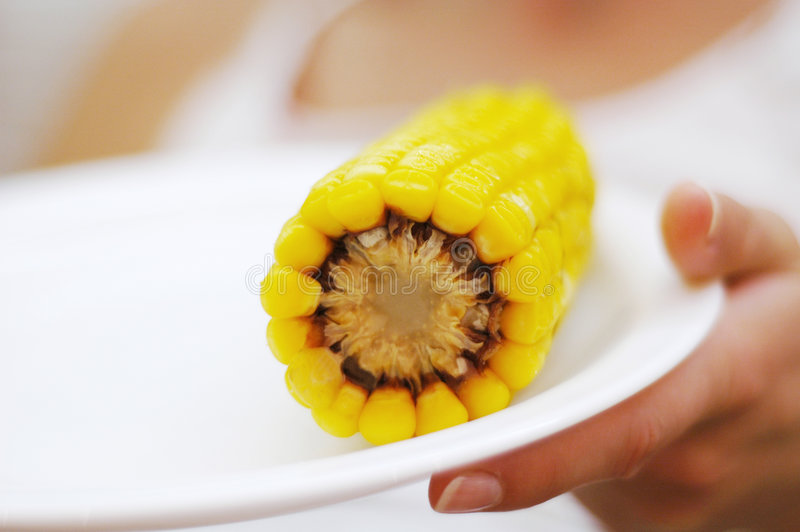 gotowana kukurydza obrazy stock
