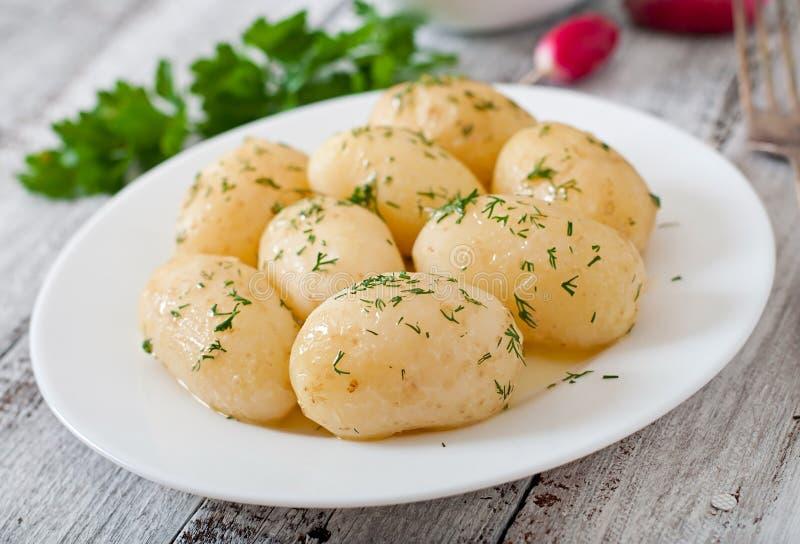 gotowane ziemniaki zdjęcie royalty free