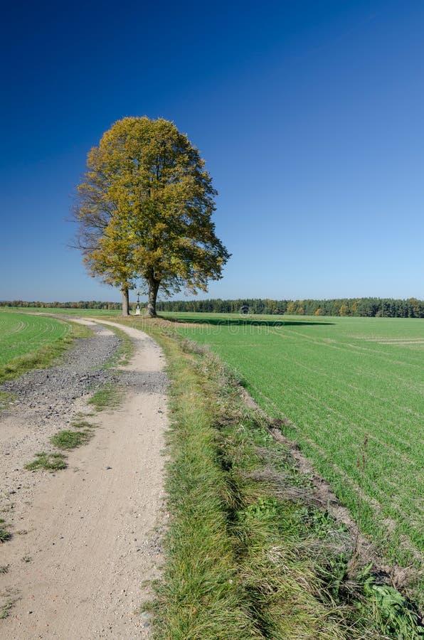 Gott ` s Folterung unter großem Kalkbaum, Tschechische Republik stockbilder