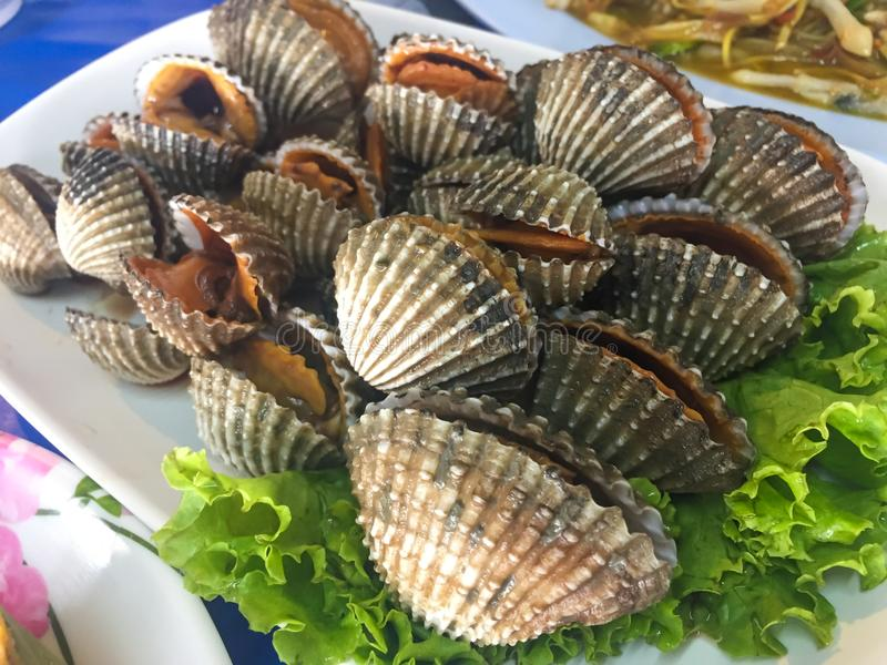 Gotujący świeży cockle owoce morza z korzennym kumberlandem fotografia stock