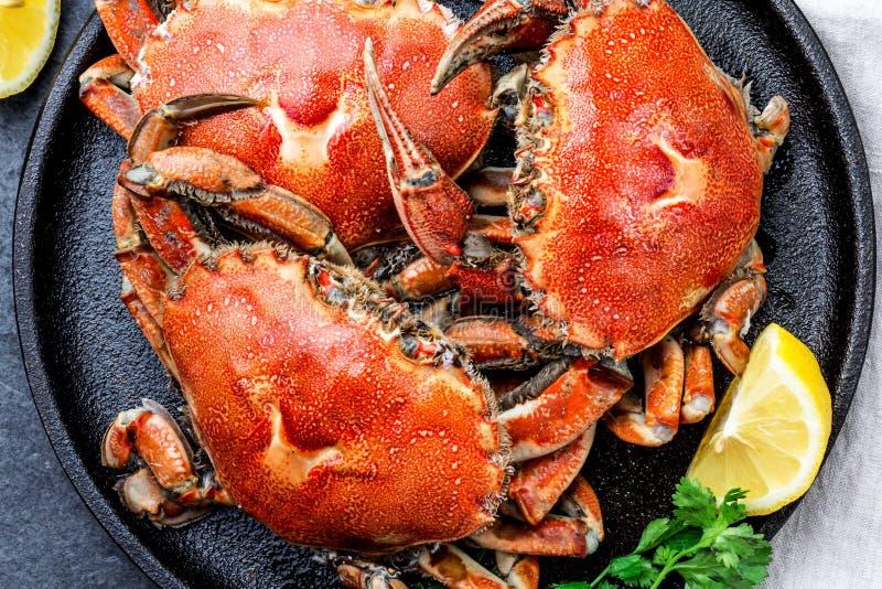 Gotujący cali kraby na czarnym talerzu słuzyć z białym winem, czerni łupkowy tło, odgórny widok obraz stock