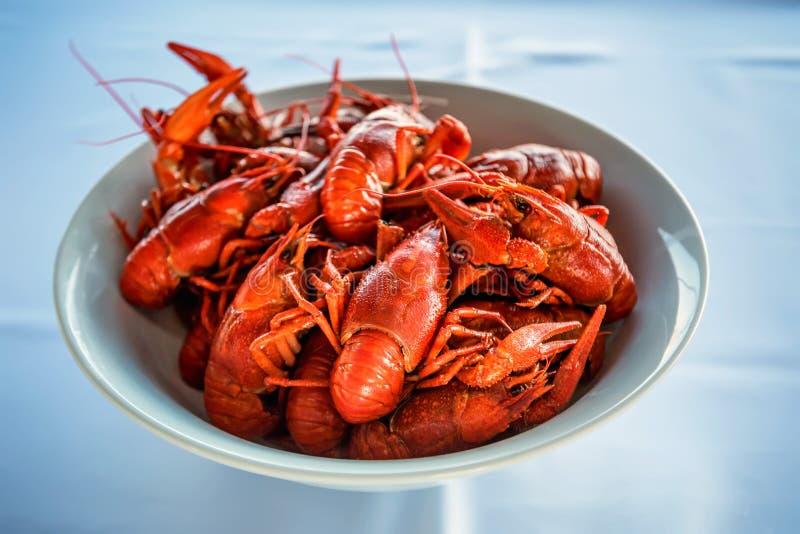 Gotujący crayfishes w bielu talerzu na stole obrazy stock
