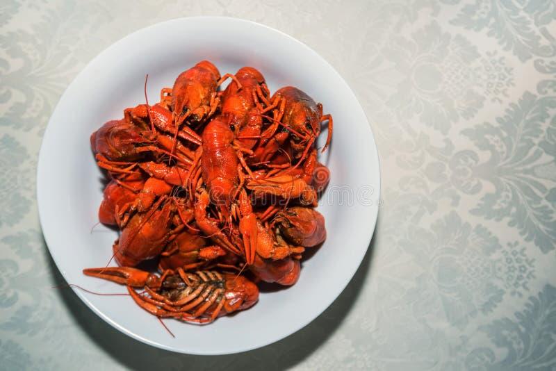 Gotujący crayfishes w bielu talerzu na stole fotografia stock