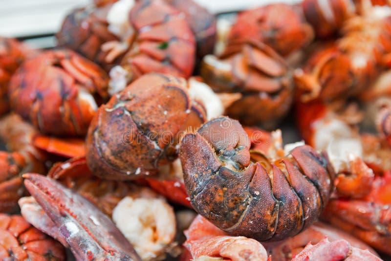 Gotujący homarów ogonów zbliżenia tło obraz stock