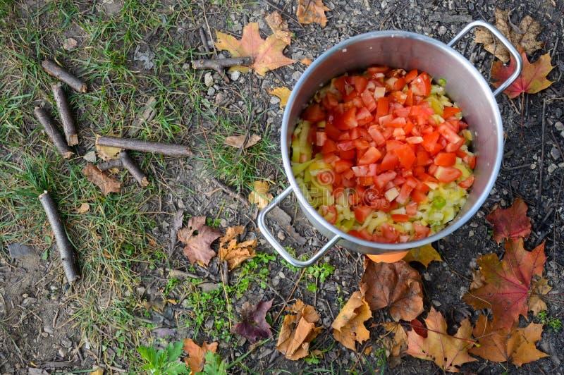 Gotujący na pinkinie cebula, pieprz i pomidory w niecce -, obraz stock