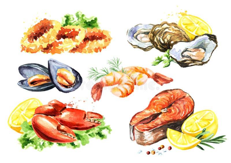 Gotujący owoce morza skład ustawiający z łososiem, kałamarnicą, krabem, mussels, ostrygami, garnelą, cytryną i zieleniami, akware royalty ilustracja