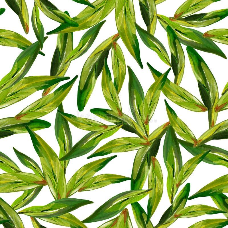 Gouache naadloze groene theebladen op een witte achtergrond royalty-vrije illustratie