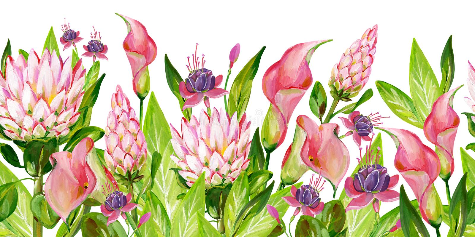 Gouache pink floral border with pink Protea, pink Calla, green leaves and Fuchsia flowers royalty free illustration