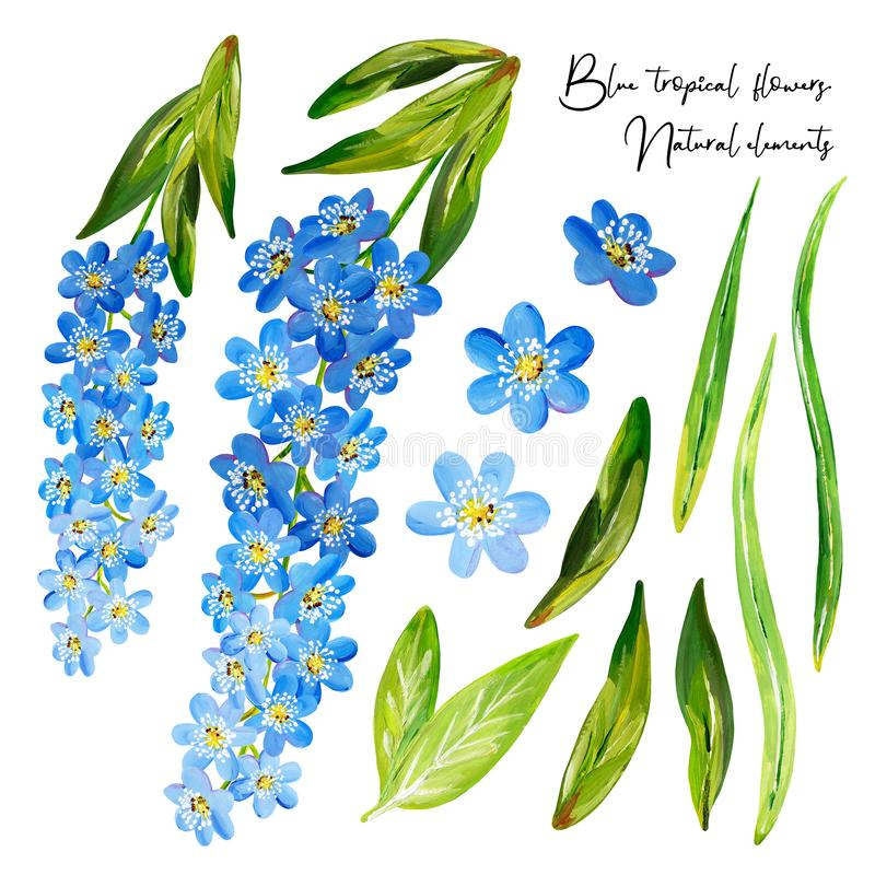 Gouache tropical set with blue flowers, floral branches and green leaves royalty free illustration