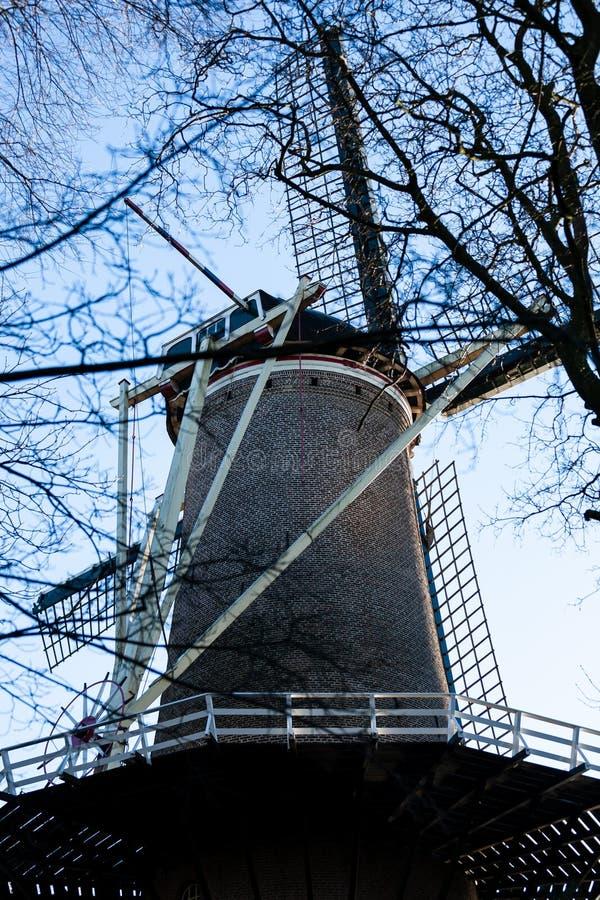 Gouda, Zuid-Holland/Nederland - Januari 20 2019: Beeld van oude die windmolen naast stadspark door boomtakken wordt genomen stock afbeeldingen