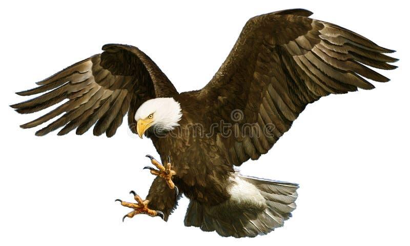 Gouden adelaar die op witte vector landen stock illustratie