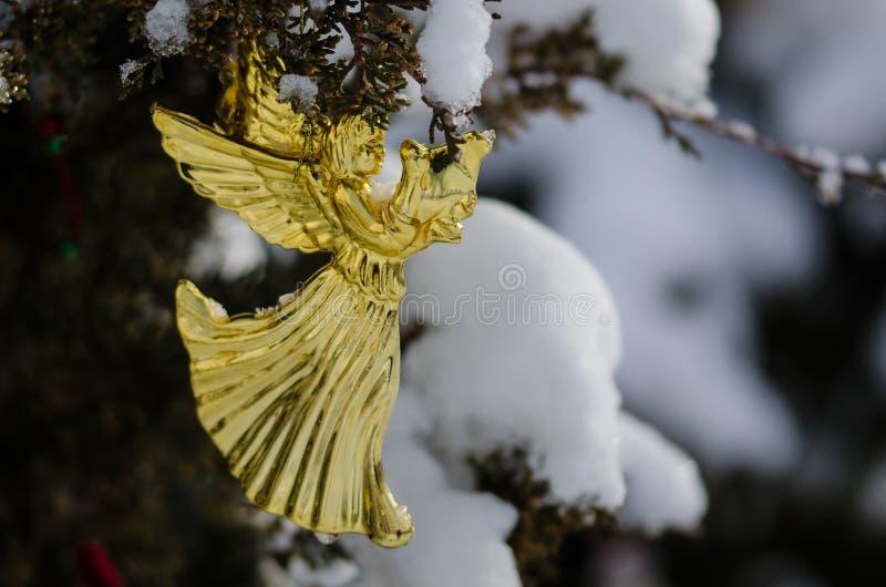 Gouden Angel Christmas Ornament Decorating een Sneeuw Openluchtboom royalty-vrije stock foto