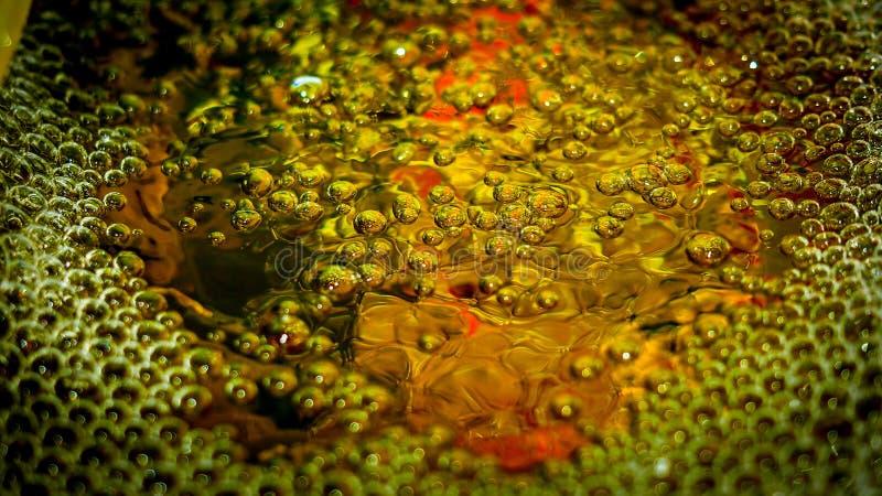 Gouden bel stock fotografie