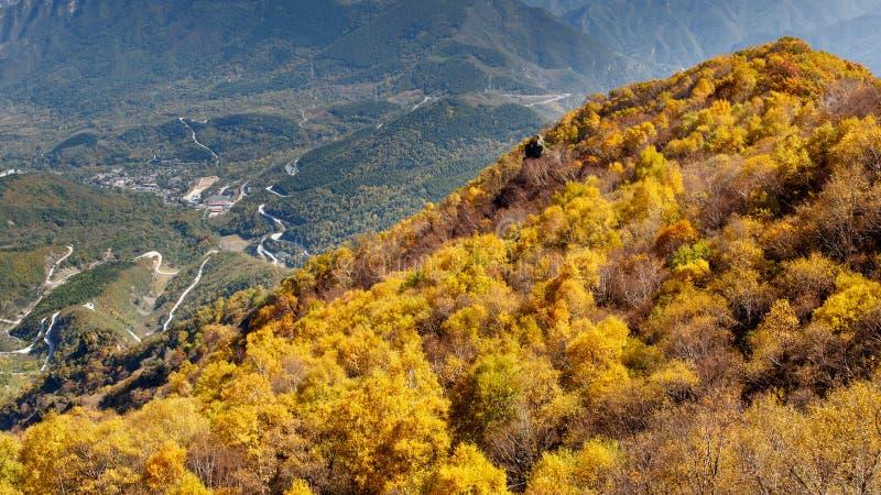 Gouden Berghelling van Baihua Mountainï ¼ Œ Peking stock fotografie