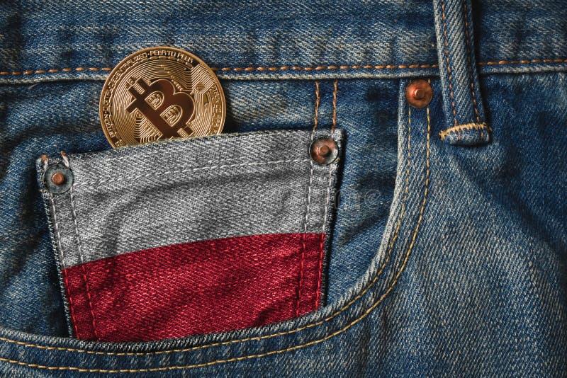 Gouden BITCOIN & x28; BTC& x29; cryptocurrency in de zak van jeans met royalty-vrije stock afbeeldingen