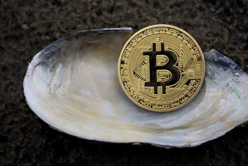 Gouden bitcoinclose-up op een achtergrond van zeeschelpen royalty-vrije stock foto