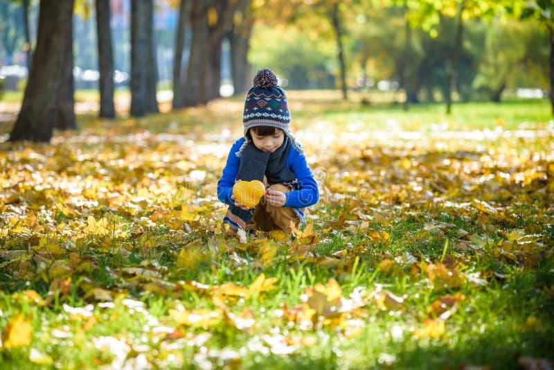 Gouden de herfstachtergrond met de dalingsbladeren en weinig peuterjongen die in het herfstgebladerte spelen Gelukkig jong geitje stock foto