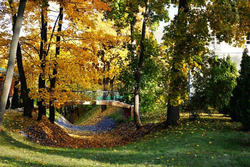 Gouden de herfstlandschap Een kleine brug over een omringd ravijn royalty-vrije stock foto