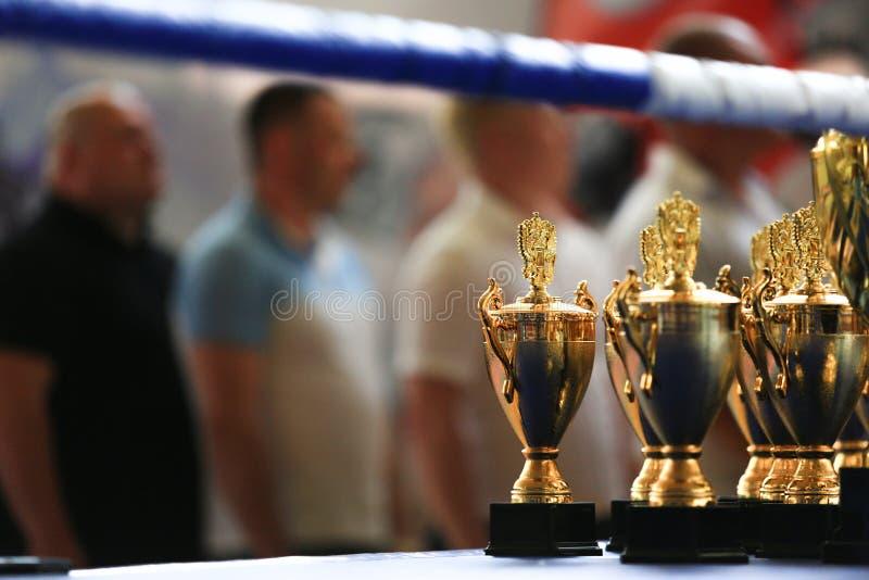 Gouden de trofeekop van de sportstapel in de ring stock foto