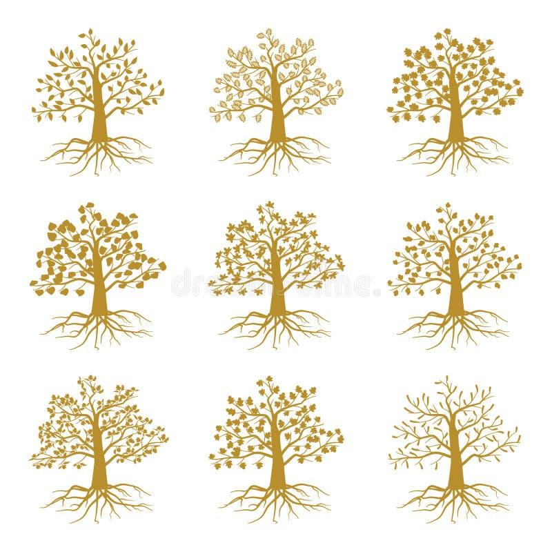 Gouden decoratieve die bomen zoals olijf en eik, asesdoorn op witte achtergrond wordt geïsoleerd royalty-vrije illustratie