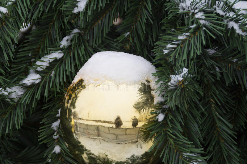 Gouden die Kerstmisbal op takkerstboom met sneeuw wordt behandeld stock illustratie