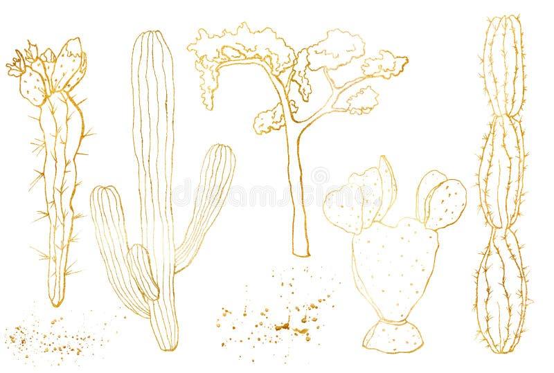 Gouden die schets met Mexicaanse cactussen wordt geplaatst De hand schilderde bloemeninzameling: woestijncactus en boom Botanisch stock illustratie