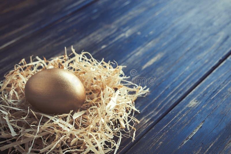 Gouden Ei in een Nest stock afbeeldingen