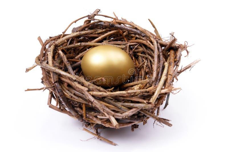 Gouden ei in nest royalty-vrije stock afbeeldingen