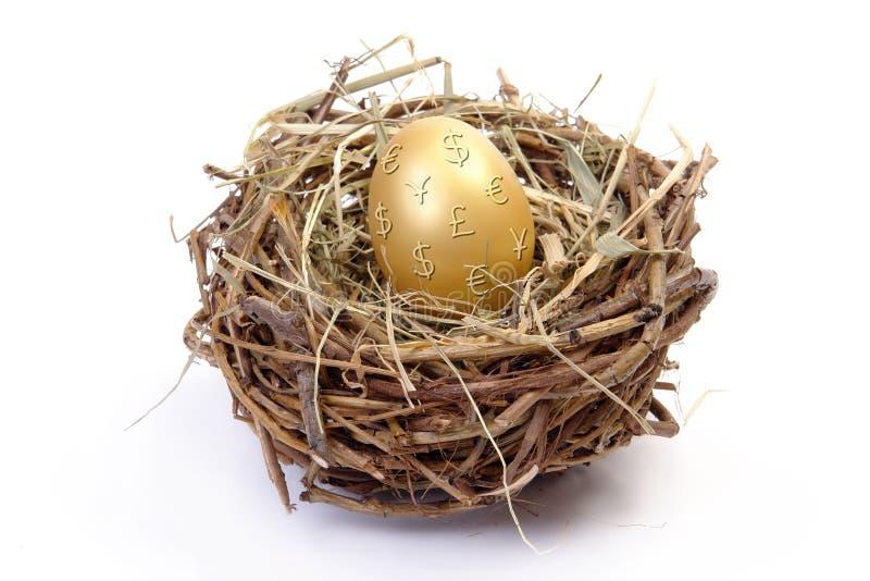 Gouden ei in nest royalty-vrije stock foto