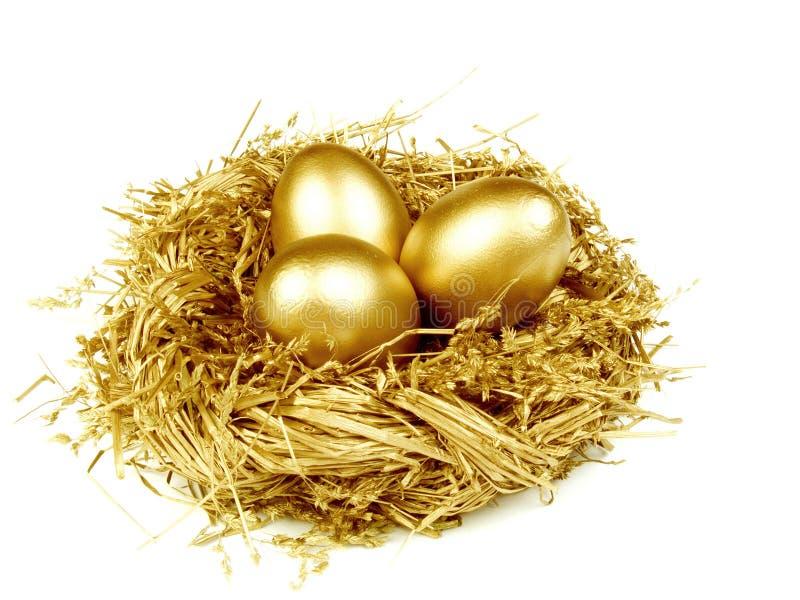 Gouden eieren in het gouden nest royalty-vrije stock afbeelding