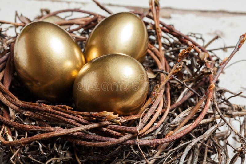 Gouden eieren in nest stock afbeeldingen