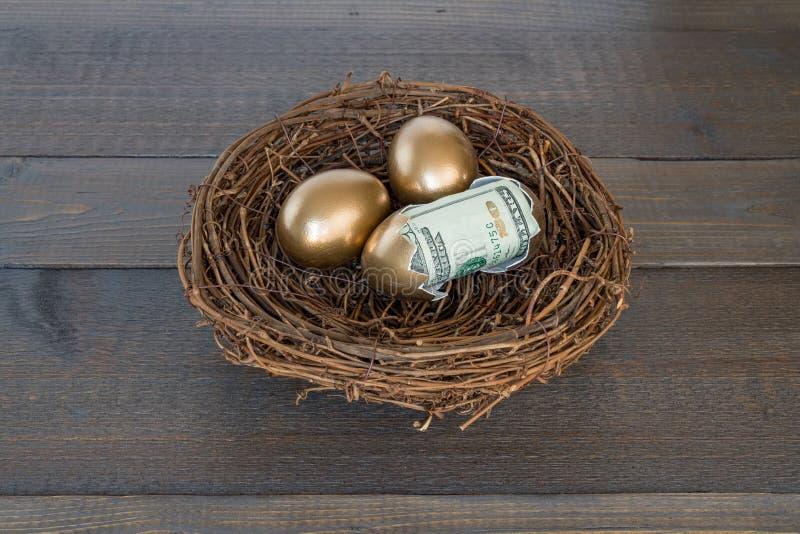 Gouden eieren in nest met één gebarsten ei open met geld stock afbeelding