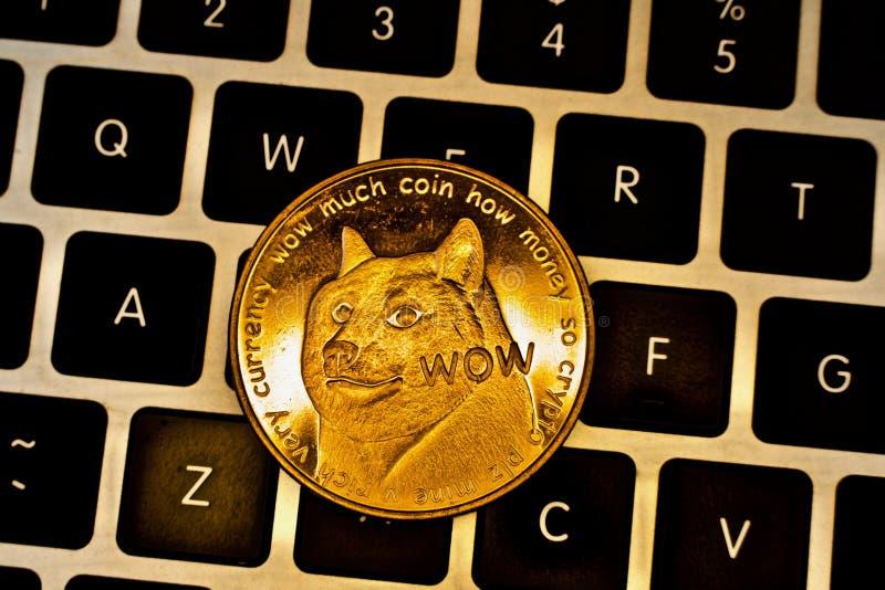 Gouden fysiek dogecoinmuntstuk stock afbeelding