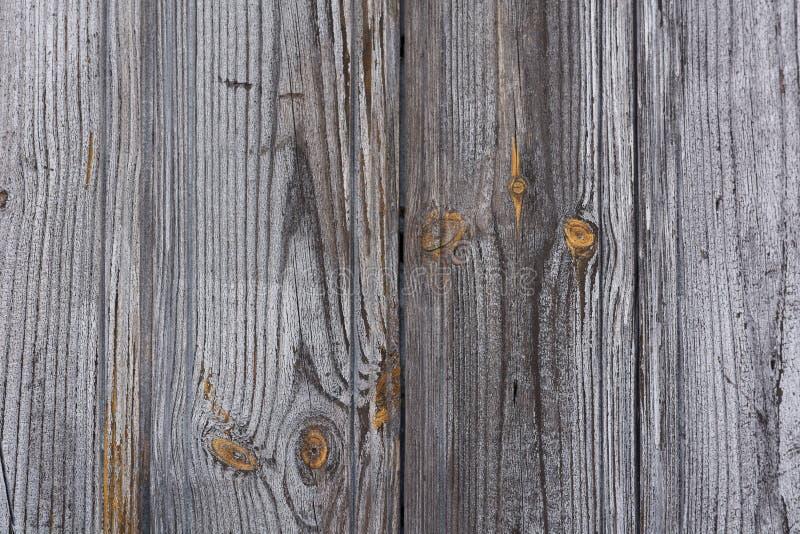 Gouden grijze houten textuur royalty-vrije stock afbeeldingen