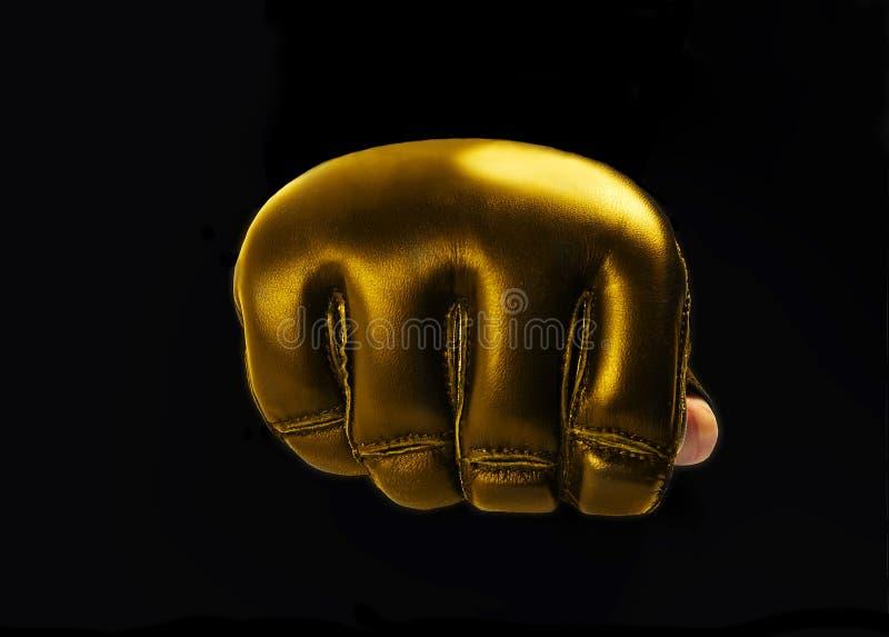 Gouden Handschoen voor de vechtsporten, mma Ruimte voor tekst embleem royalty-vrije stock foto