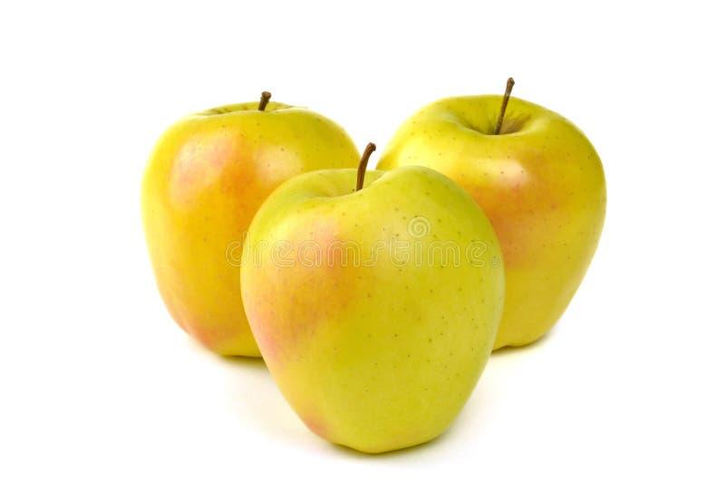 Gouden - heerlijke appel royalty-vrije stock afbeelding