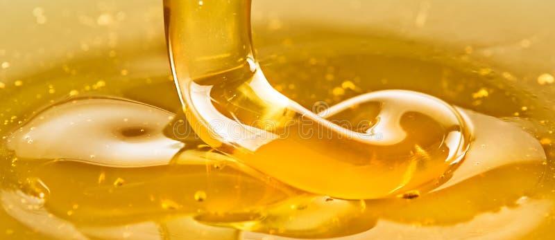 Gouden honing royalty-vrije stock afbeelding