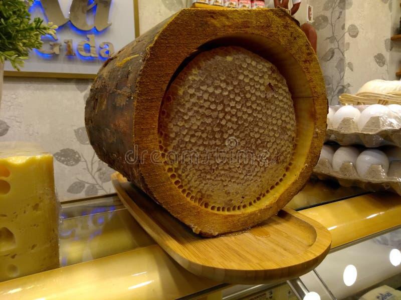Gouden honing in boomschors, boomhoning royalty-vrije stock afbeeldingen