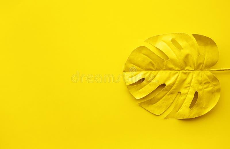 Gouden kleur van tropische bladeren, de ruimteachtergrond van de gebladerteinstallatie royalty-vrije stock fotografie