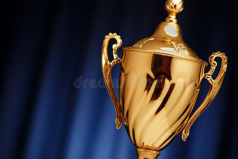 Gouden Kop op een donkerblauwe achtergrond royalty-vrije stock afbeeldingen