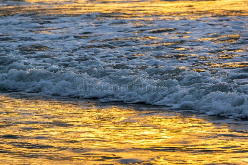 Gouden Licht op Water stock afbeelding