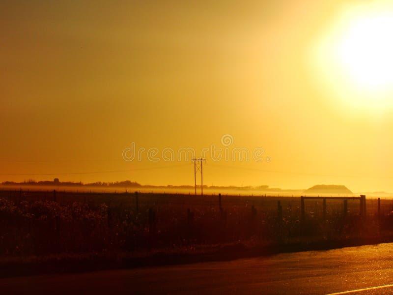 Gouden prairies stock afbeelding