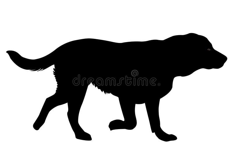 Gouden retrieverhond vector illustratie