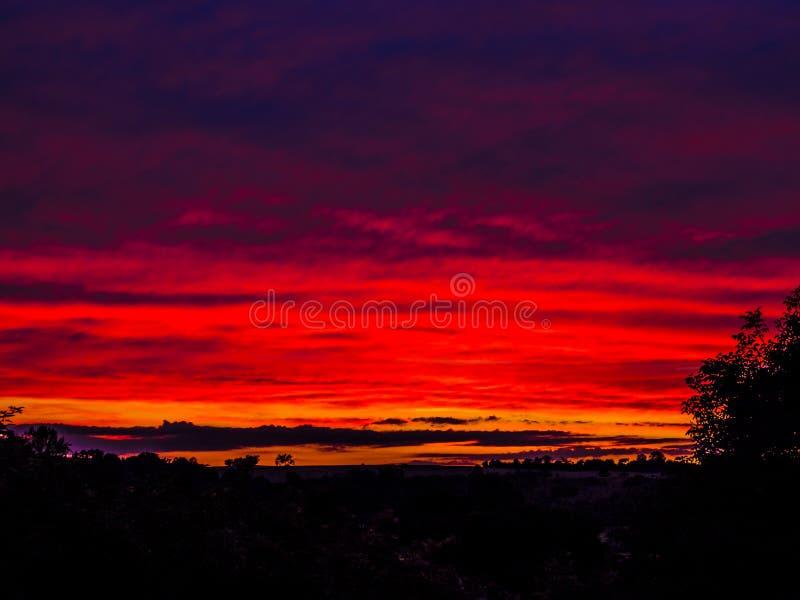 Gouden, rode en purpere zonsondergang met lage horizon stock afbeelding