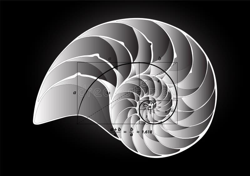 Gouden Sectie over Shell vector illustratie