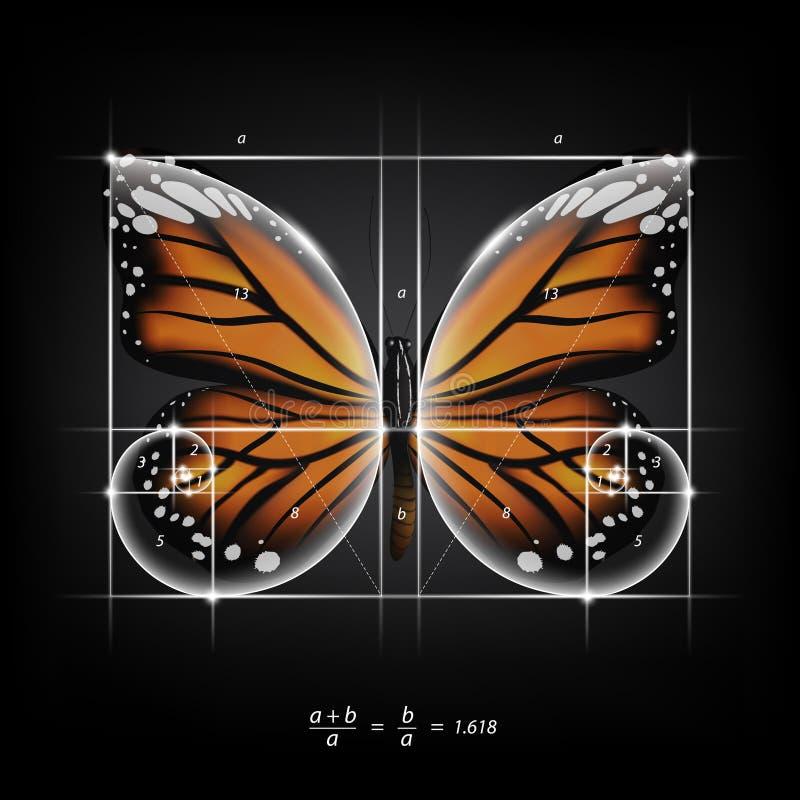 Gouden sectieverhouding, goddelijk aandeel en gouden spiraal op de vectorillustratie van de monarchvlinder royalty-vrije illustratie